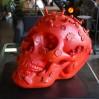 Sculpture 3D, crâne humain